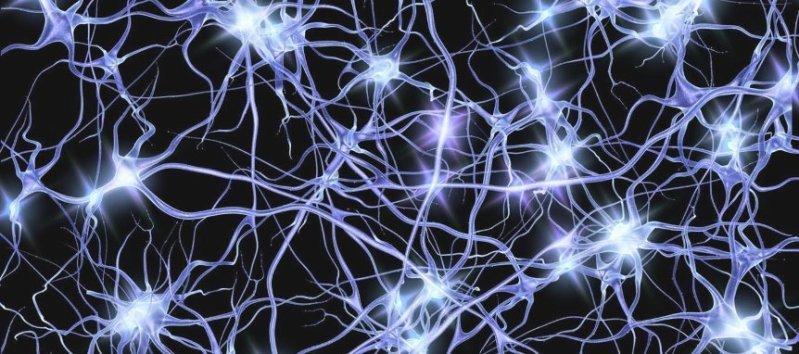 Conoscere la malattia di Parkinson dalla A alla Z