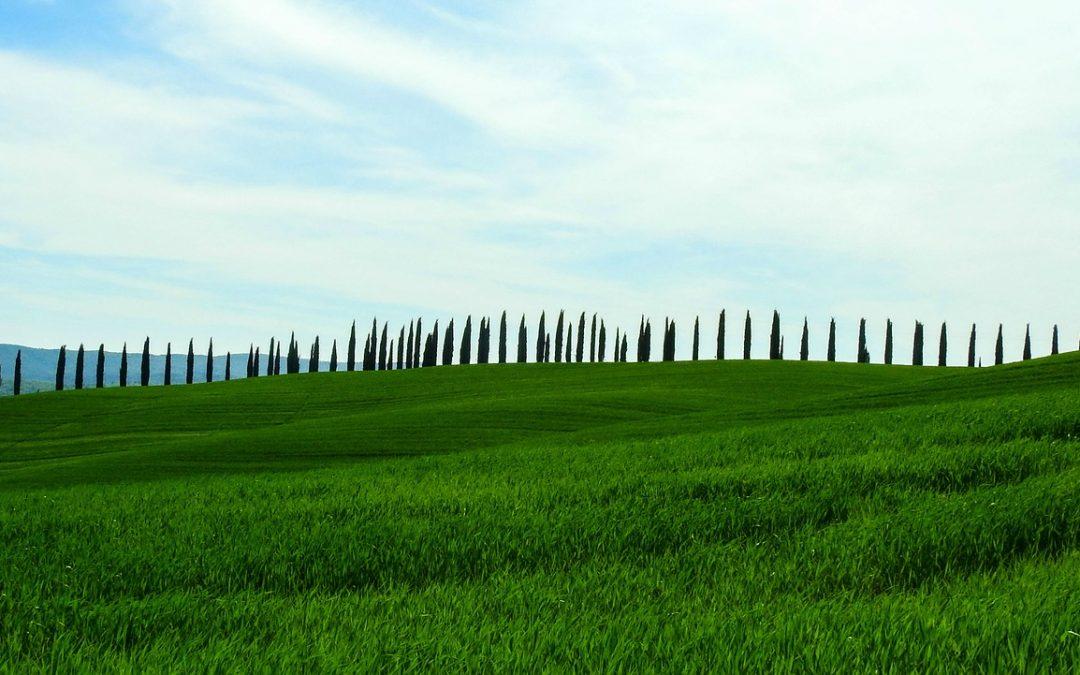 Toscana: Piano Sanitario e Sociale Integrato 2010-2020: Informativa preliminare (febbraio 2018)