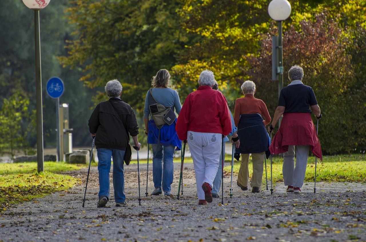 Nordic Walking a Pisa con Tartaruga e Associazione Pisa Parkinson_Variazione di data