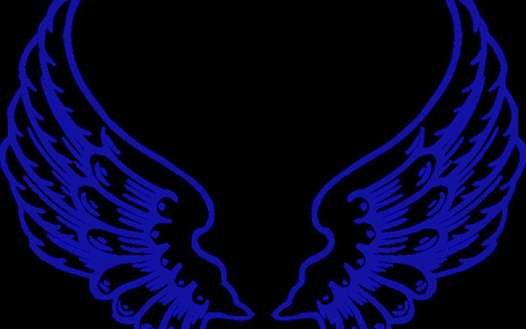 Angel's Wings_Dispositivo dell'ing. Luca Valerio Messa
