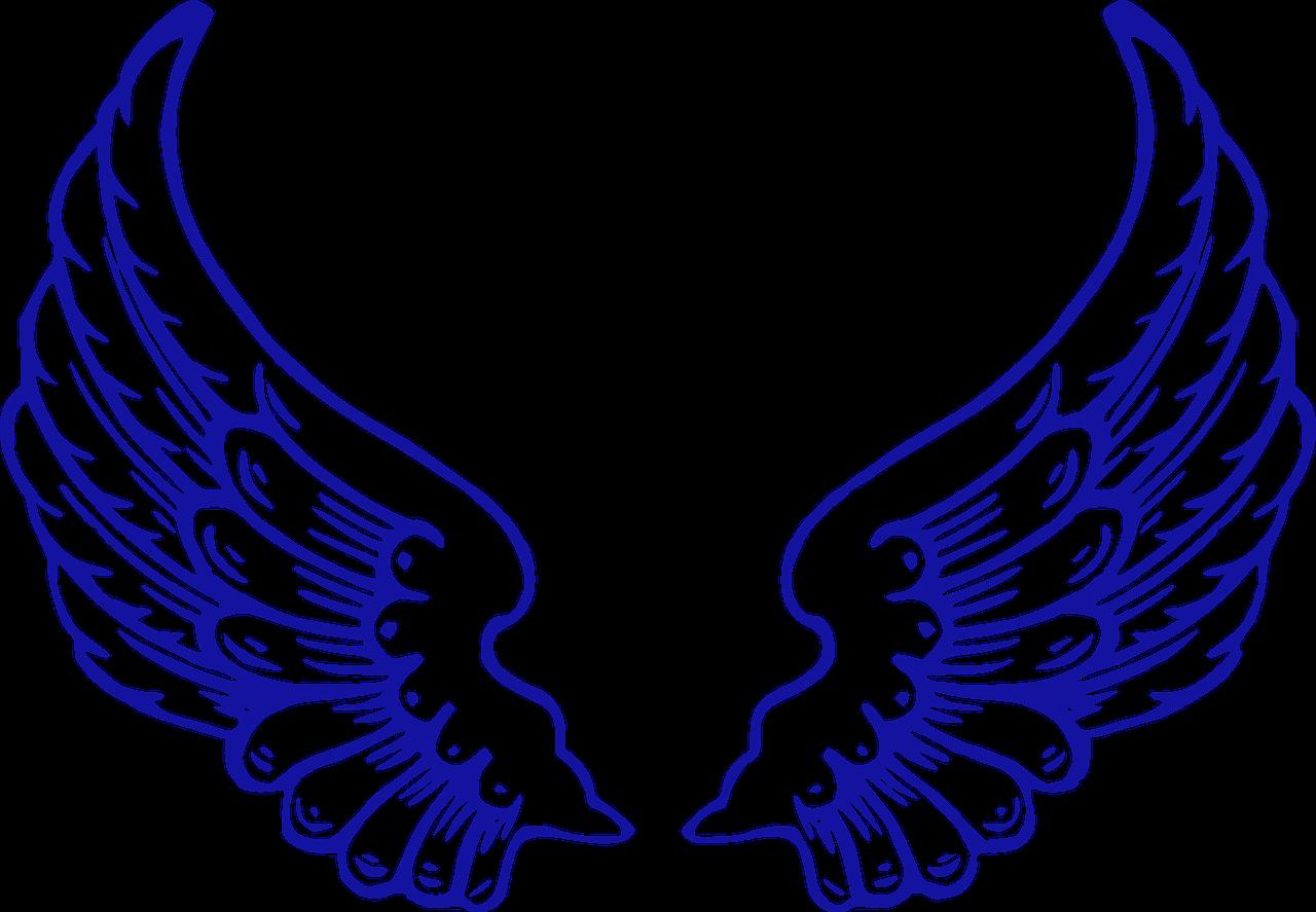 Angel's Wings per il Parkinson_dimostrazione on-site Sabato 16 ottobre 2021 a Siena