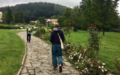 Cos'è la meditazione camminata? Quando camminiamo, sappiamo di camminare